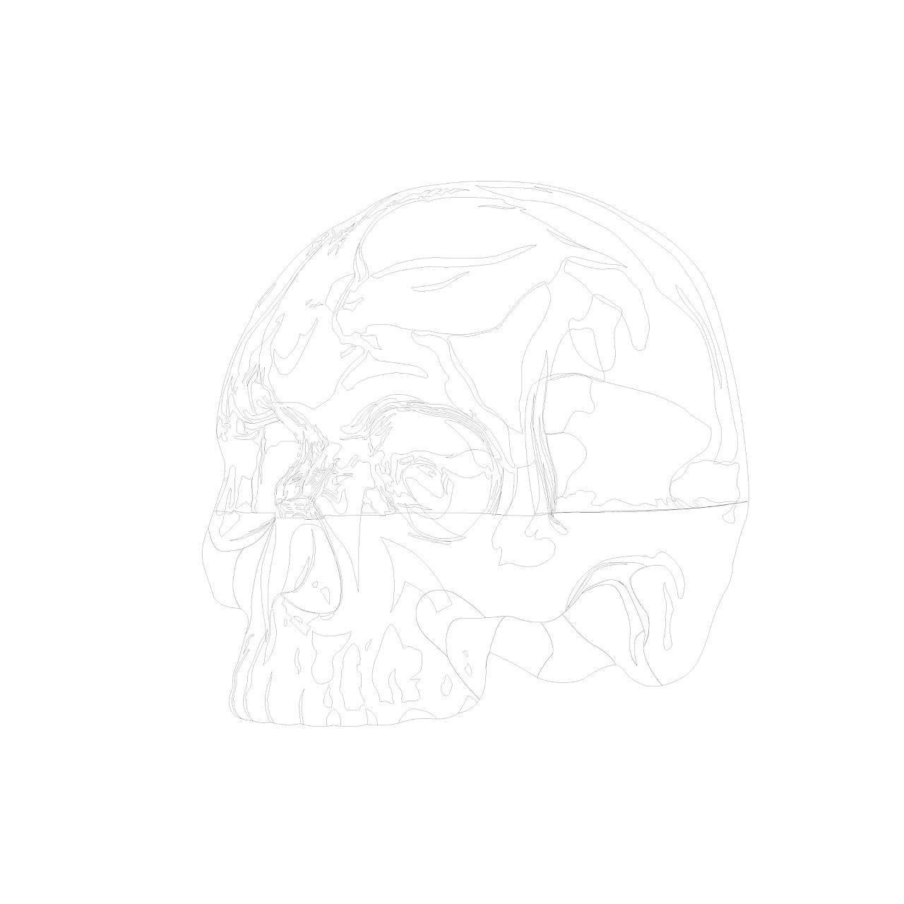 拟物玻璃质感骷髅头|插画|其他插画|粽子不是米图片