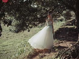 欧美婚纱样片