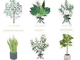 北欧植物系列