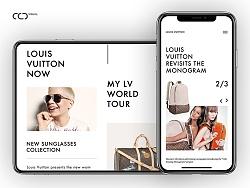 LV Website Concept Design