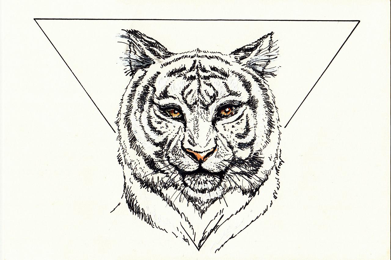 复杂黑白创意动物画分享展示