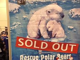 【拯救北极熊】在行动