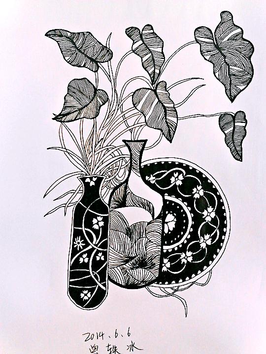 黑白画|绘画习作|插画|一片青藤叶图片