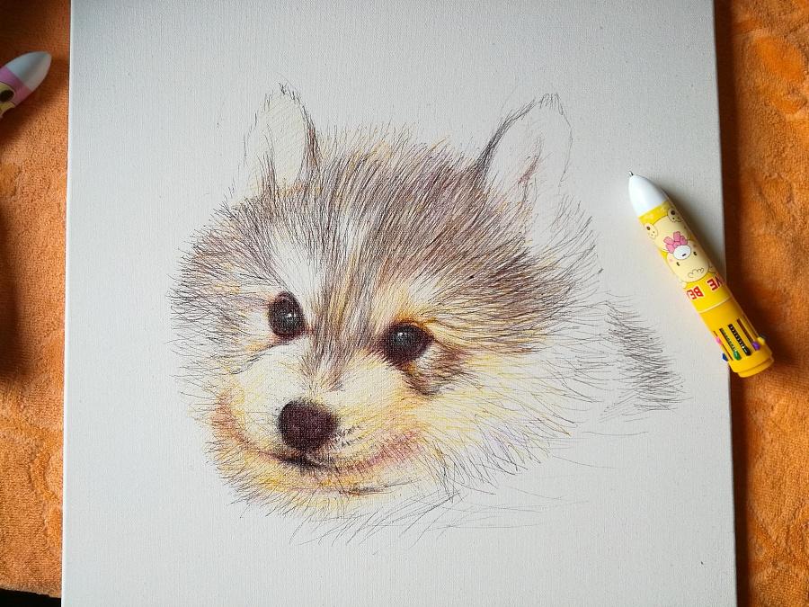 圆珠笔小动物