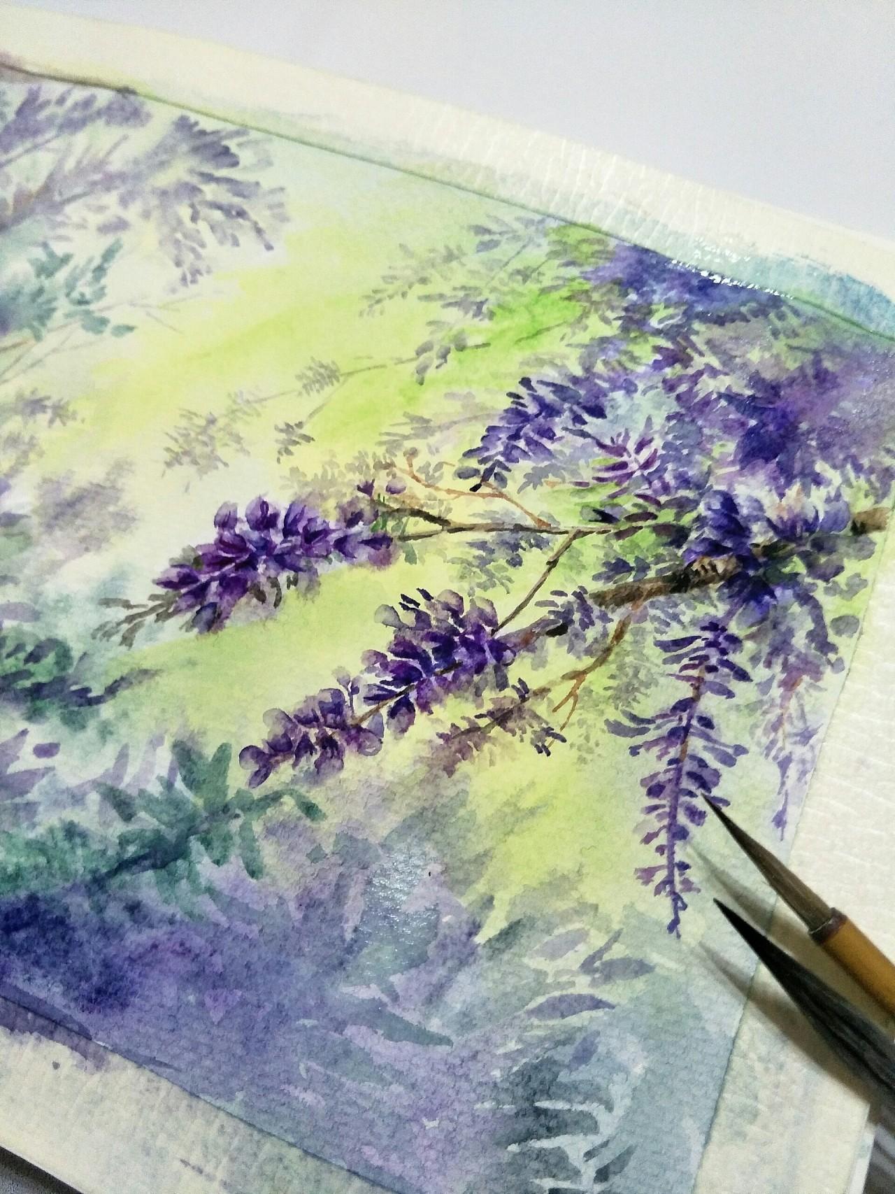 手绘水彩紫藤花