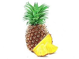 【驴大萌彩铅教程251】手绘24节气水果图鉴 谷雨菠萝