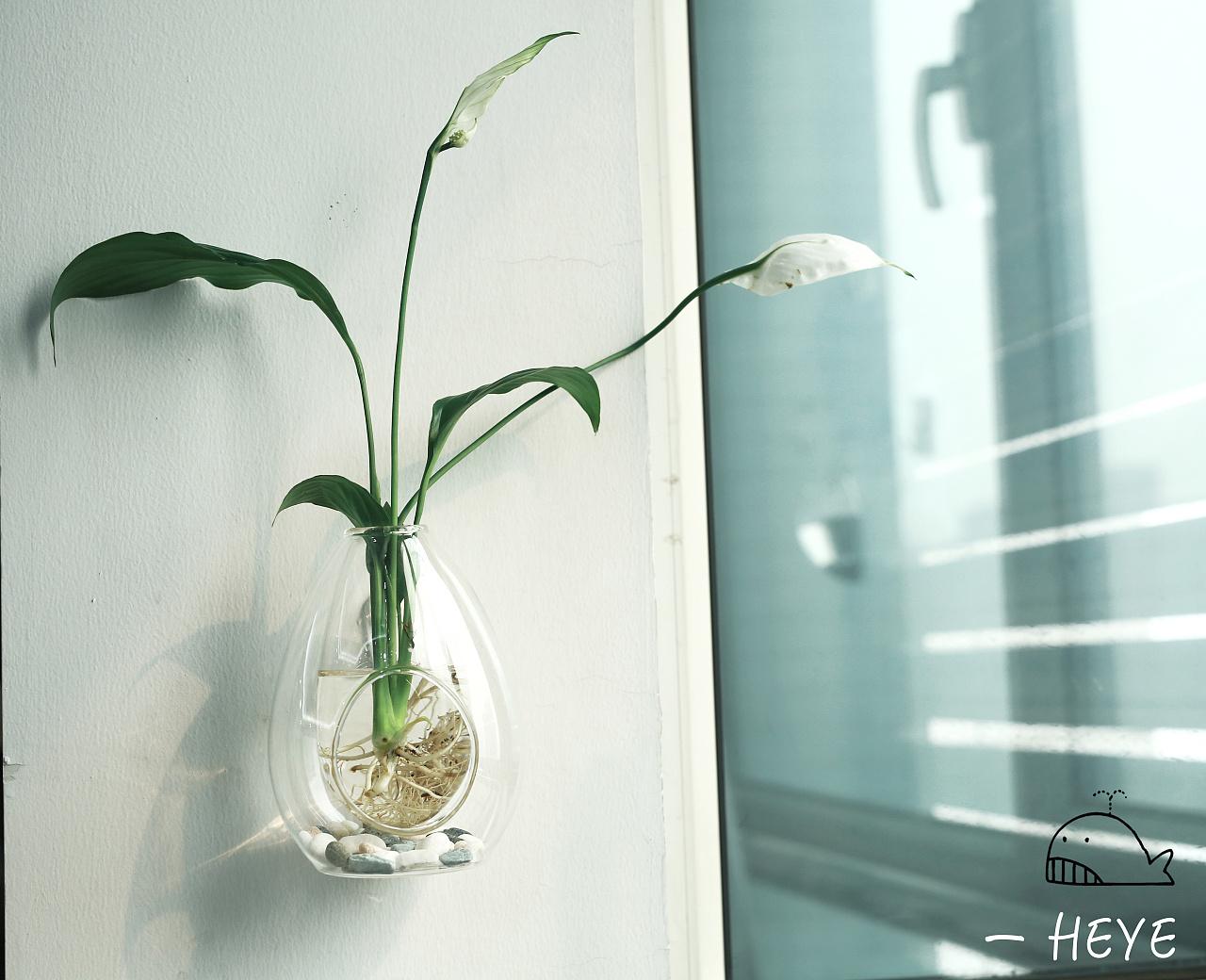 好看的花瓶图片大全