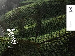 茶道官网视觉