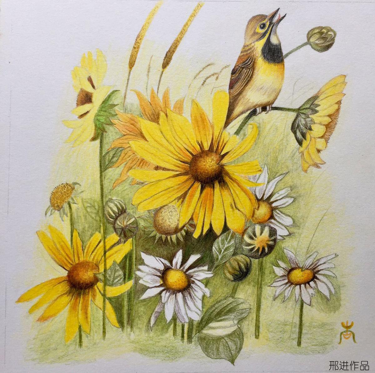 暖色 彩铅花卉