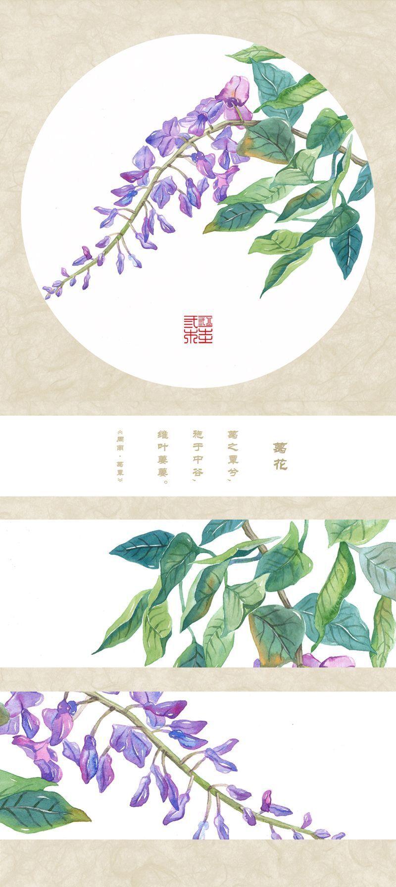《诗经・草木之葩图录》――葛花