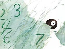 七秒钟记忆的鱼