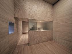 HOUSE VISION 2016丨木纹之家