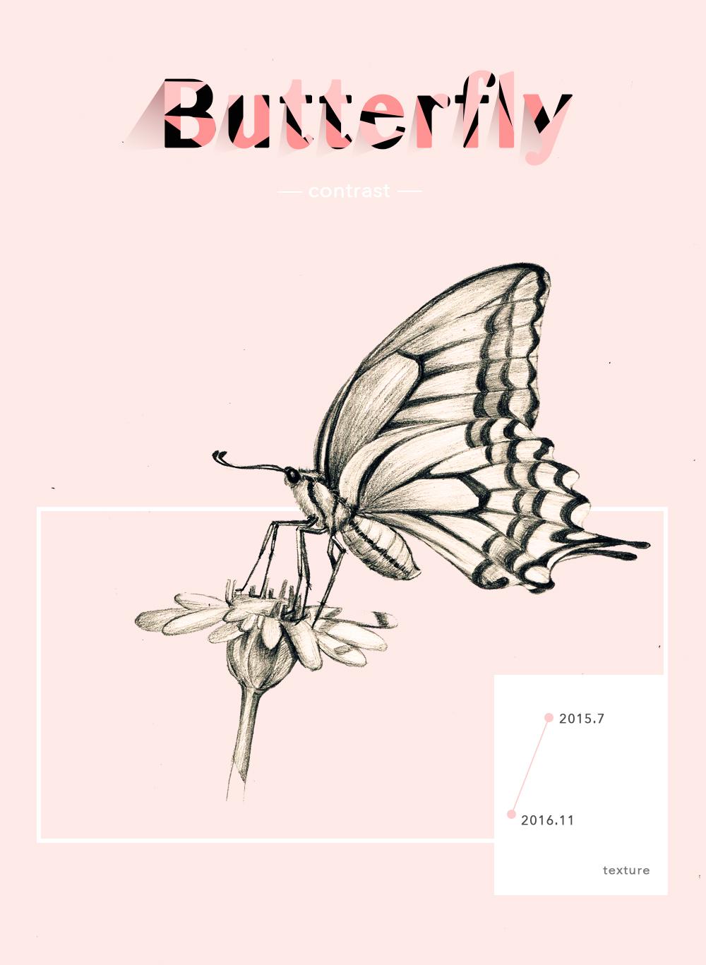 手绘—蝴蝶与鱼