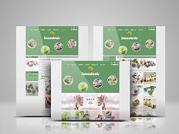 网页设计-多肉植物