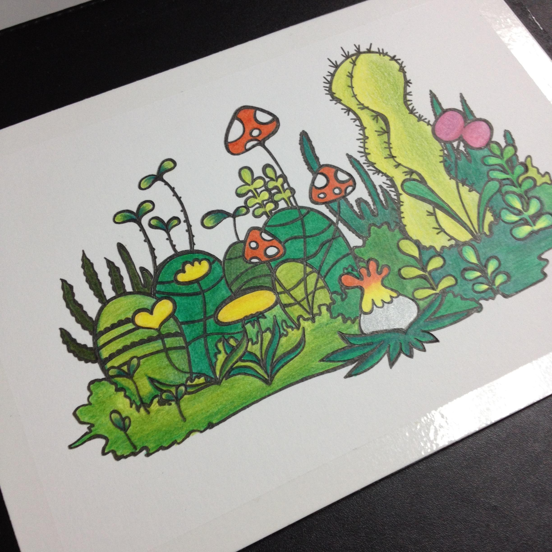 【豆腐先生】小清新 植物 手绘 彩铅