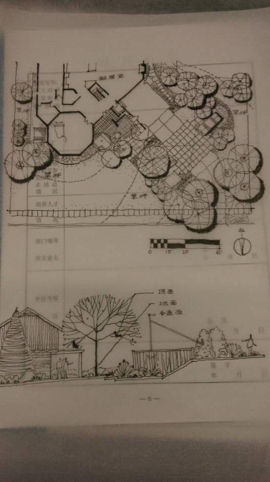 别墅庭院手绘平面图3