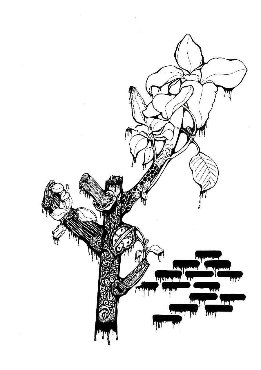 手绘|黑白装饰画(二)——花卉