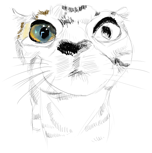 手绘动漫猫咪黑白