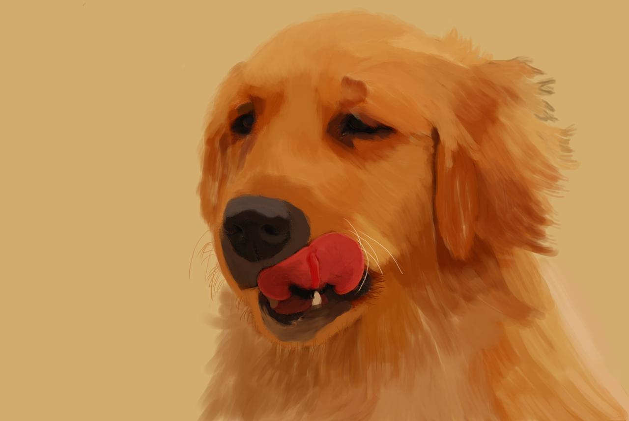 狗狗形象手绘