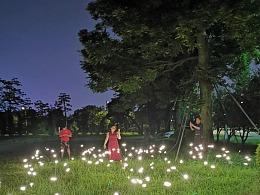 萤火虫灯工厂 铭星专业仿真萤火虫灯夜晚是一道风景线