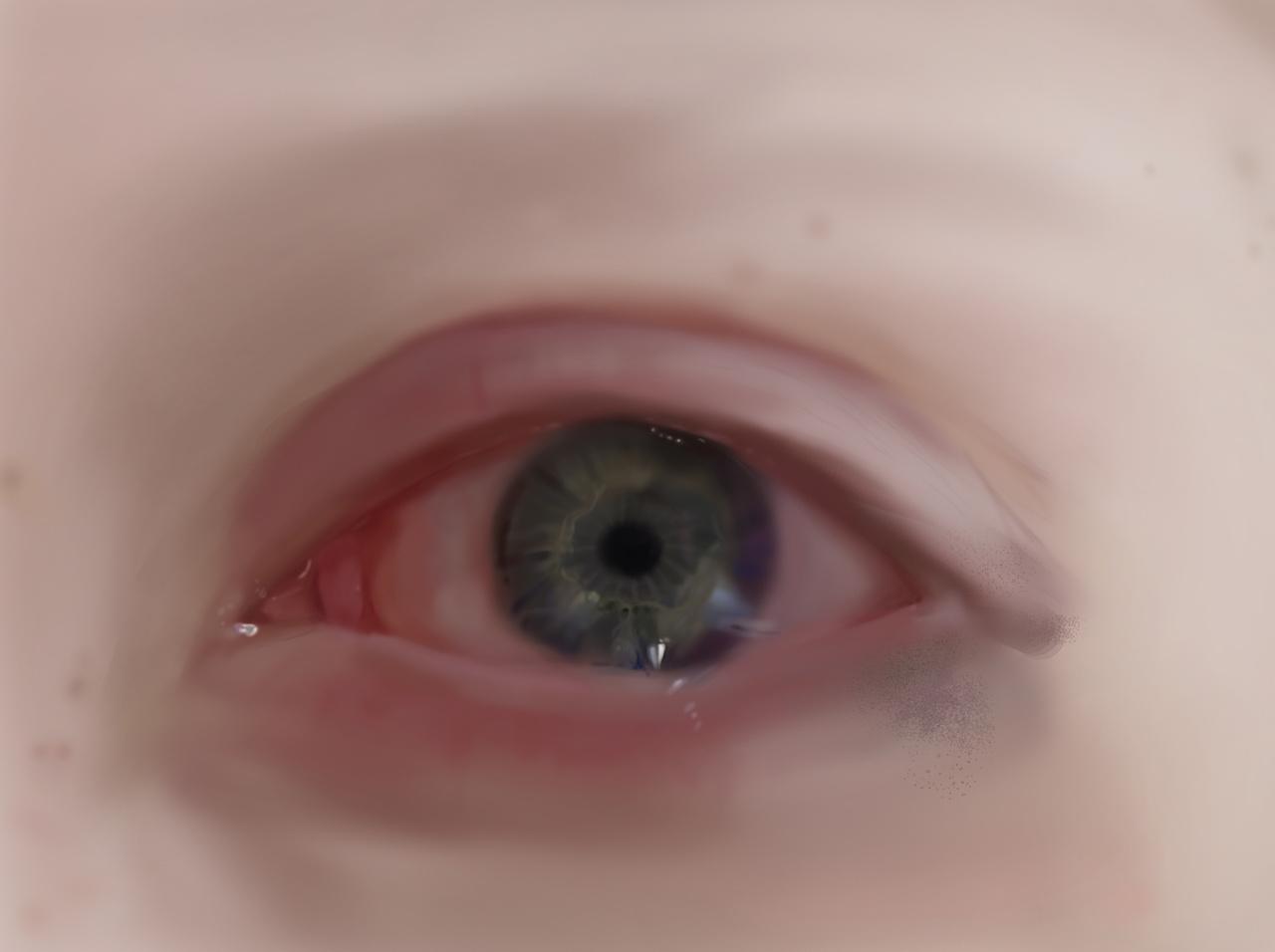 百度仔细研究了眼部构造,甚至解剖图我姐都有被吓到说为什么画