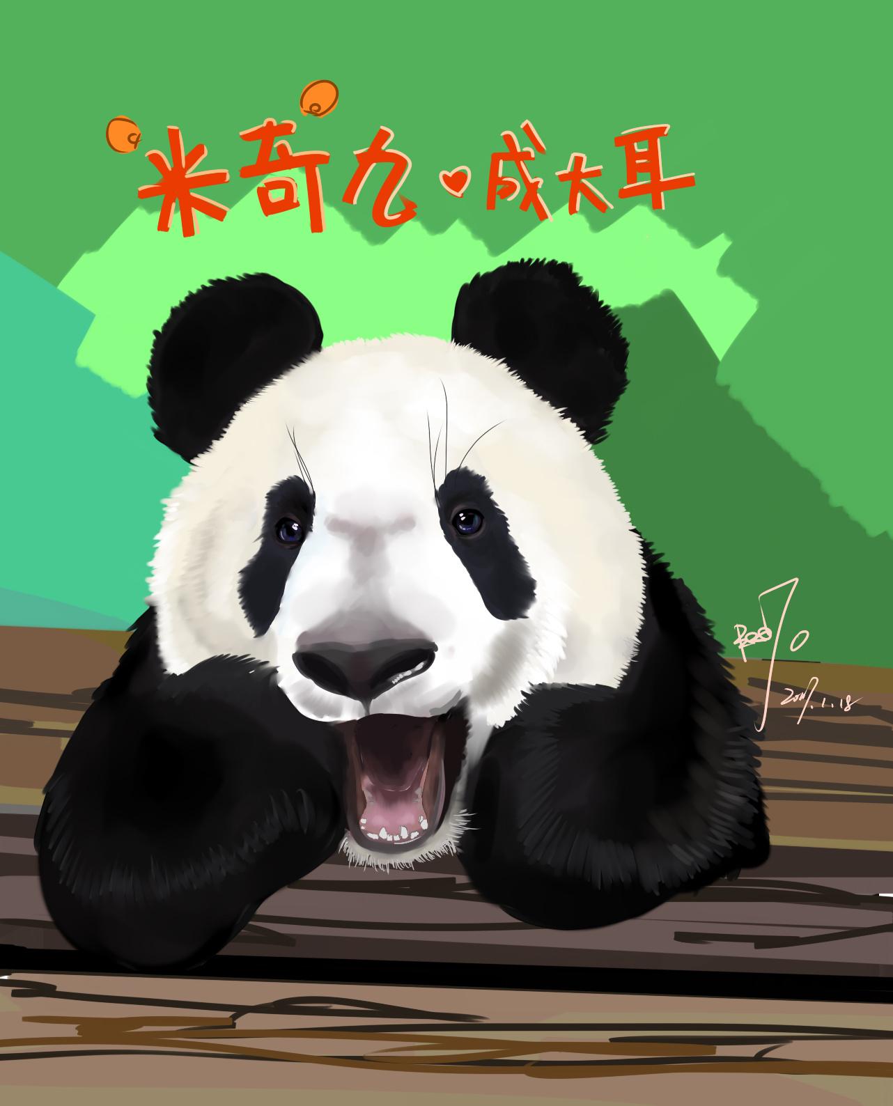 壁纸 大熊猫 动物 1282_1588 竖版 竖屏 手机