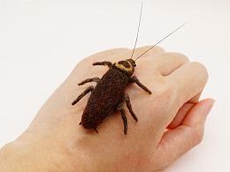 小昆虫-羊毛毡