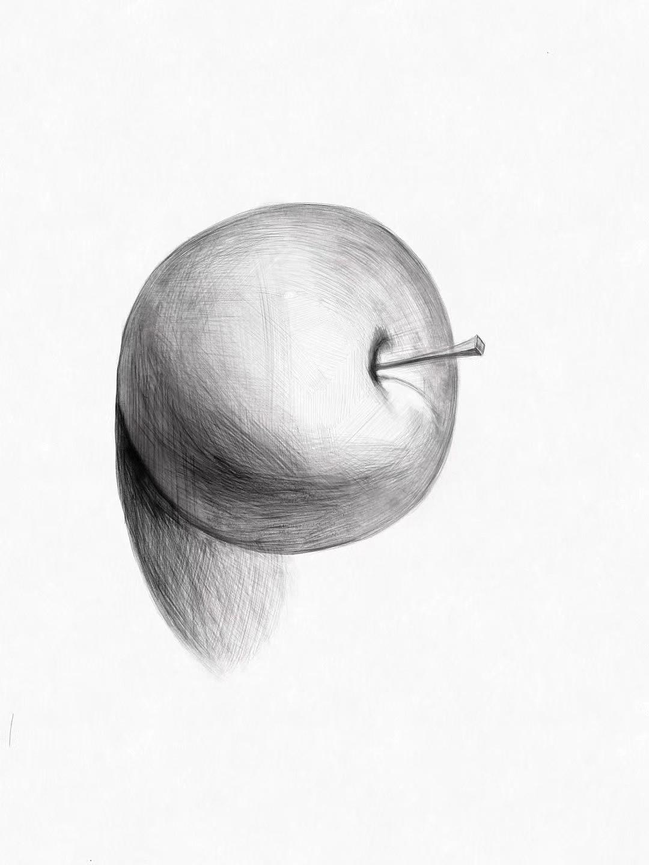 苹果素描练习图片