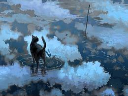 流浪的黑猫