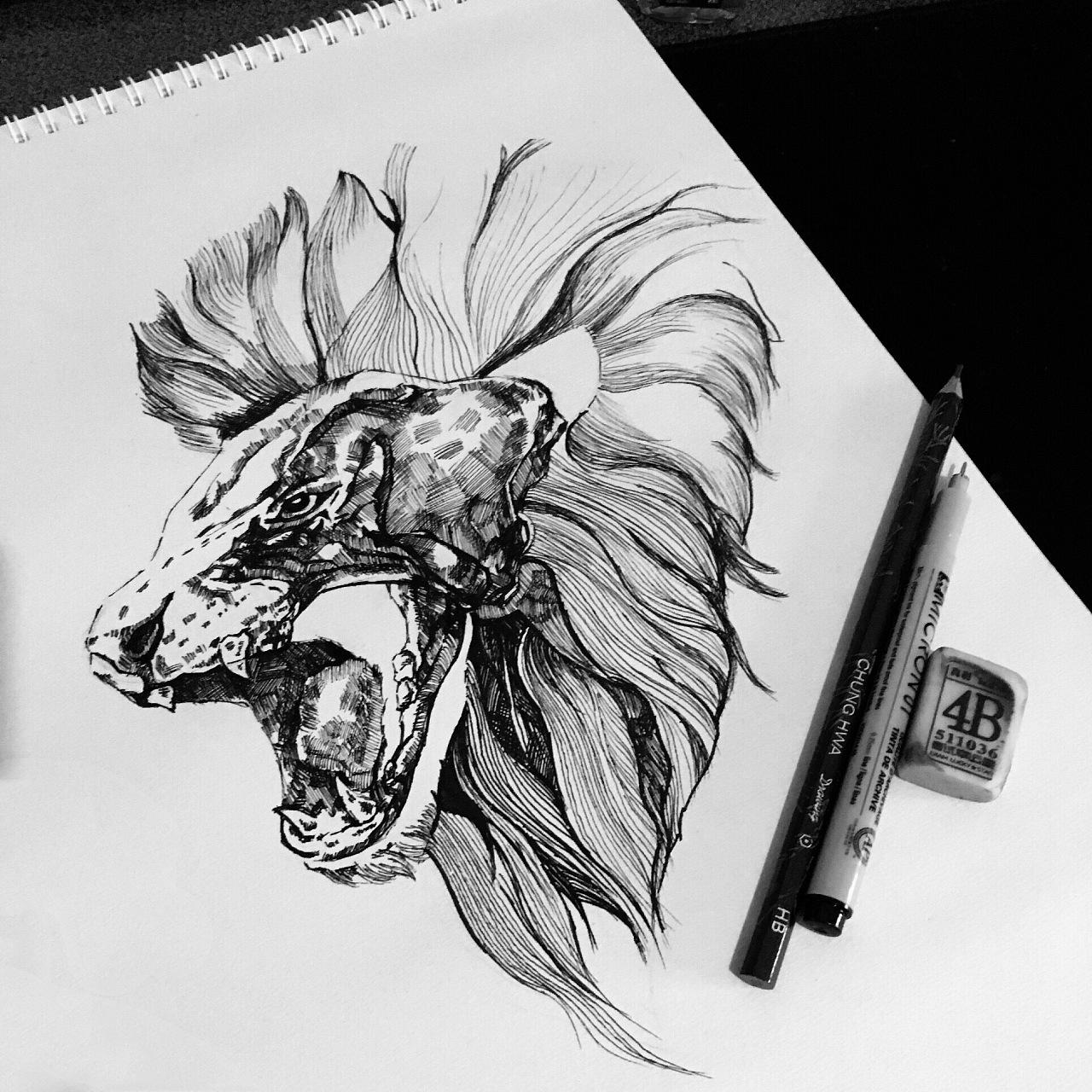 针管笔画练习