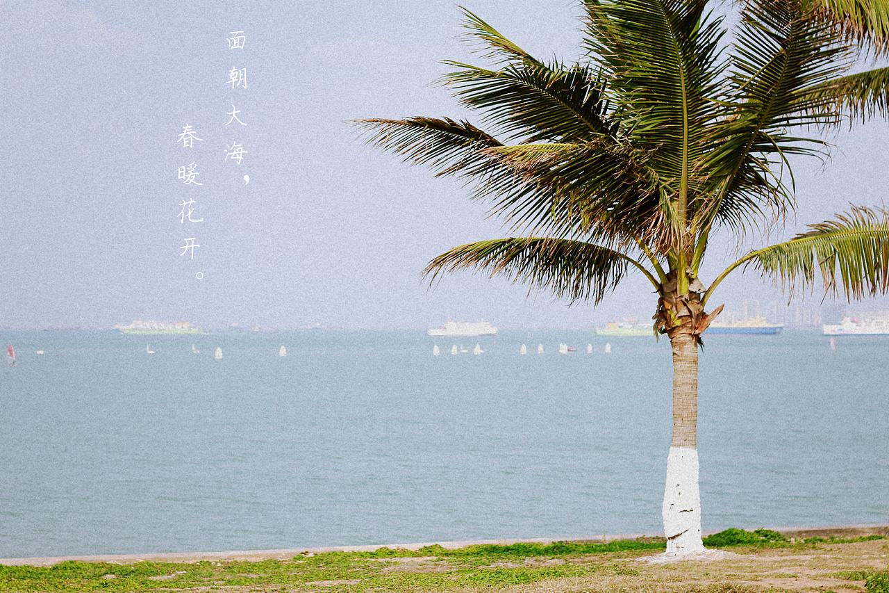 面朝大海,春暖花开 摄影 Chen先森爱摄影