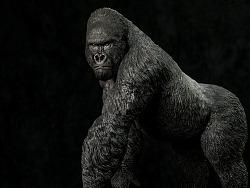 博物 1/4 山地大猩猩 雕像