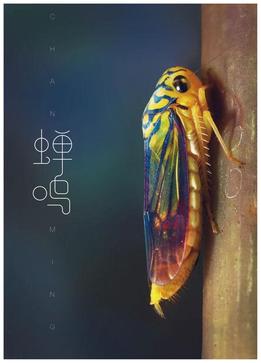 字体设计之蝉鸣|平面/字形|财主|张字体-原创设滨州办公家具设计图片