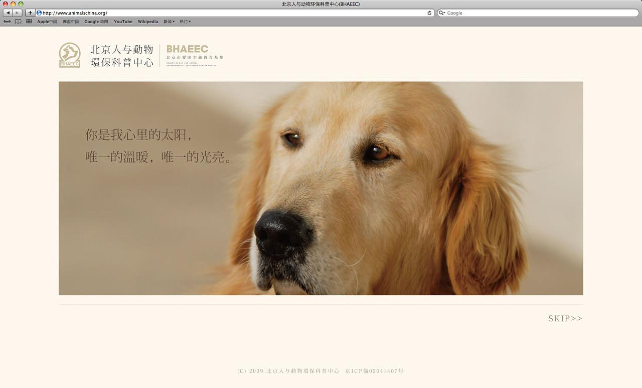 2012,北京小动物保护中心