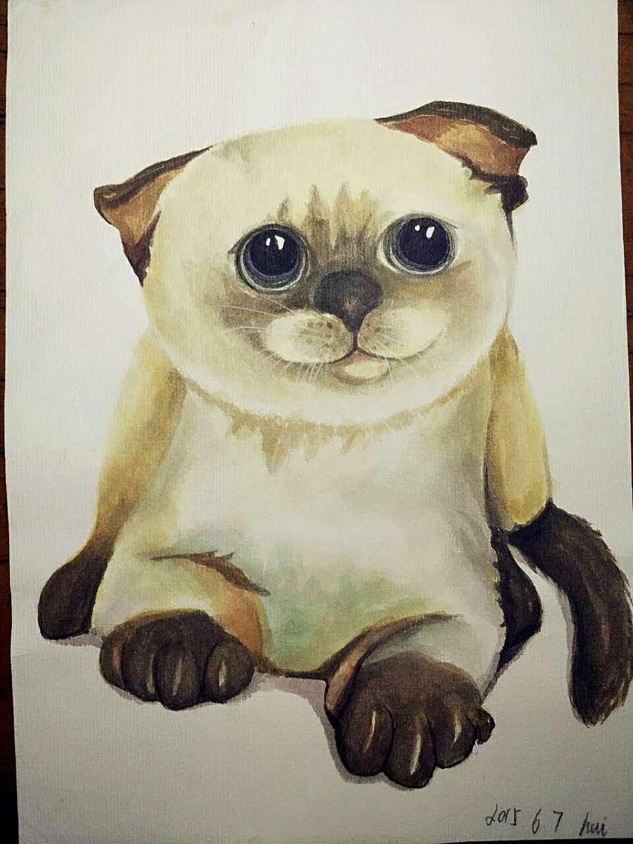 彩铅手绘练习|绘画习作|插画|常慧