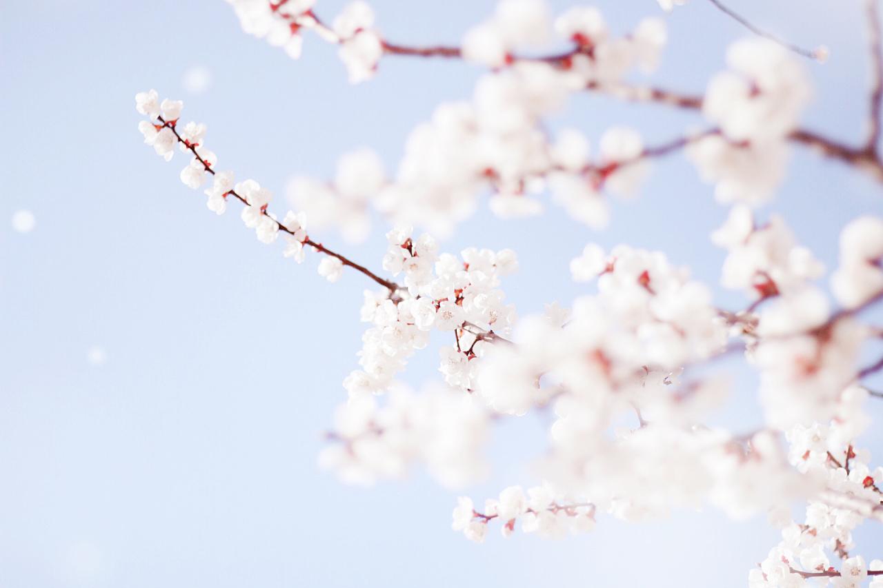 春暖花开歌�ydj: