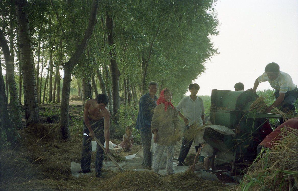 河南农村�9.�..��z(_一组90年代的河南农村写真胶片