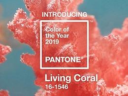 2019年设计流行色来了!——珊瑚橘