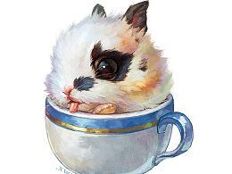 【萌宠by雪娃娃】杯杯兔
