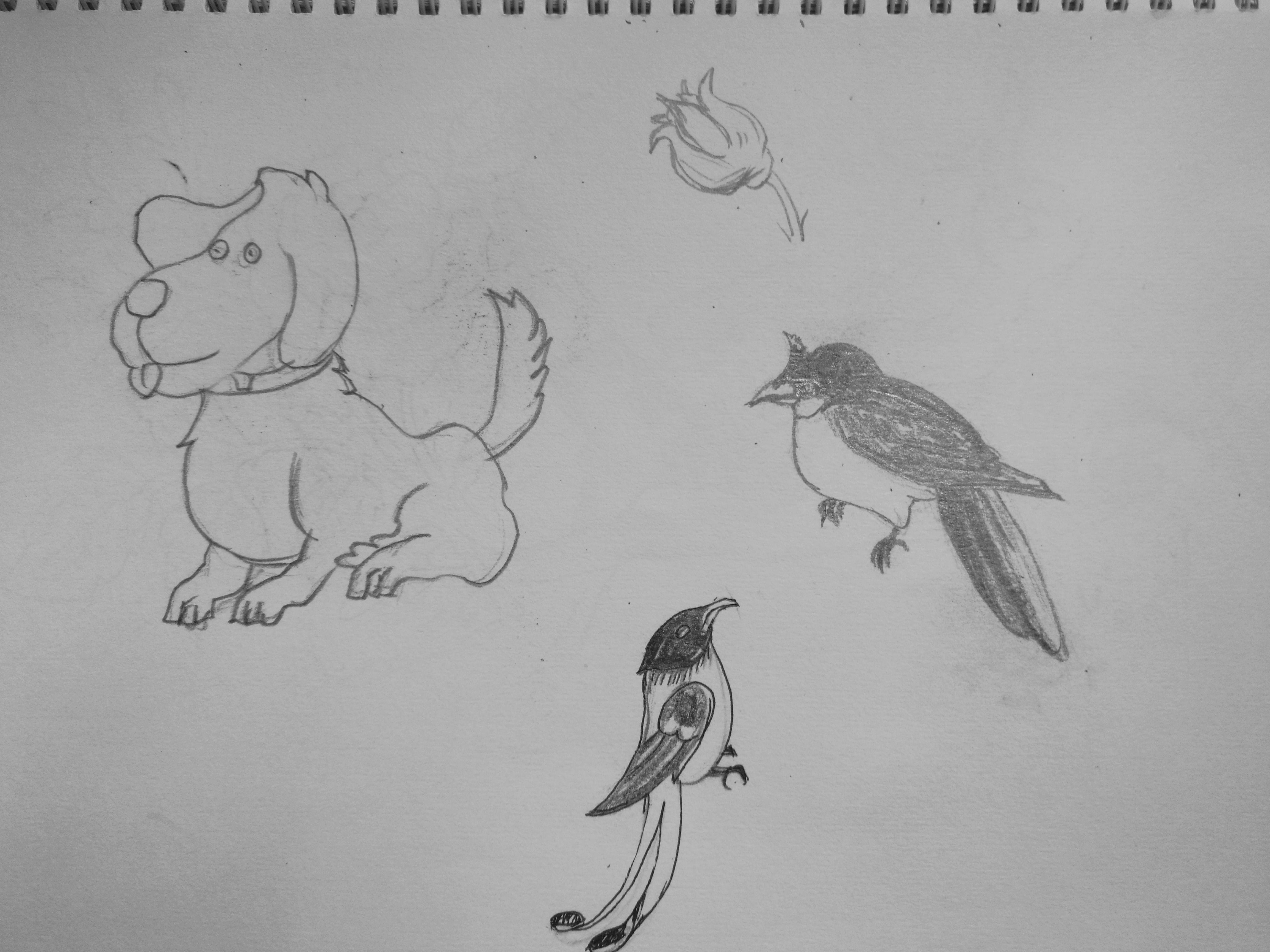 手绘动物造型