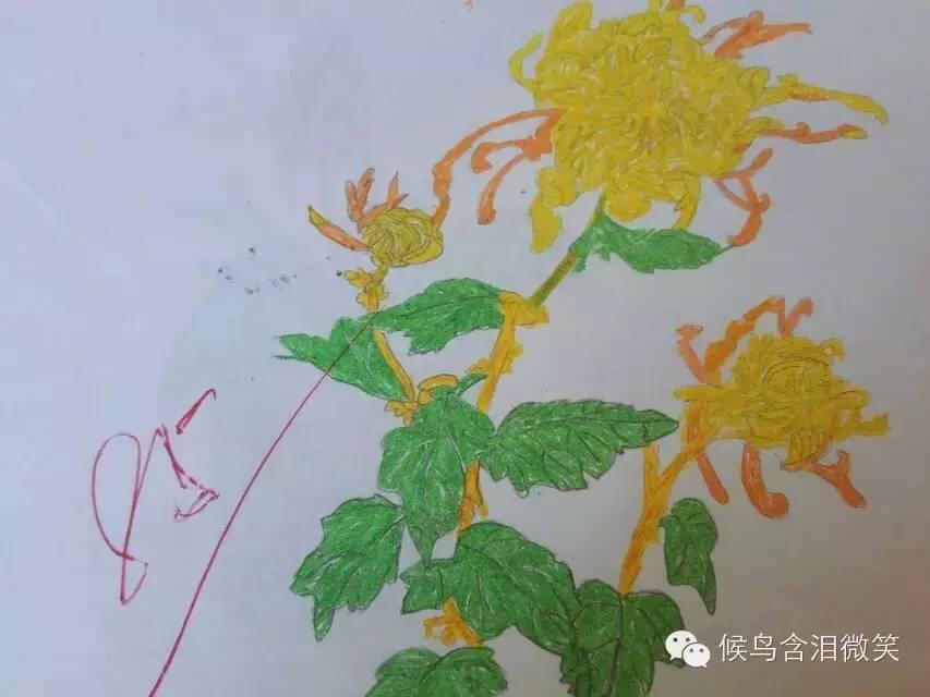 小学六年级美术作业#临摹美术课本菊花图图片