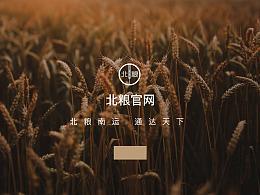 Web design 企业网站设计