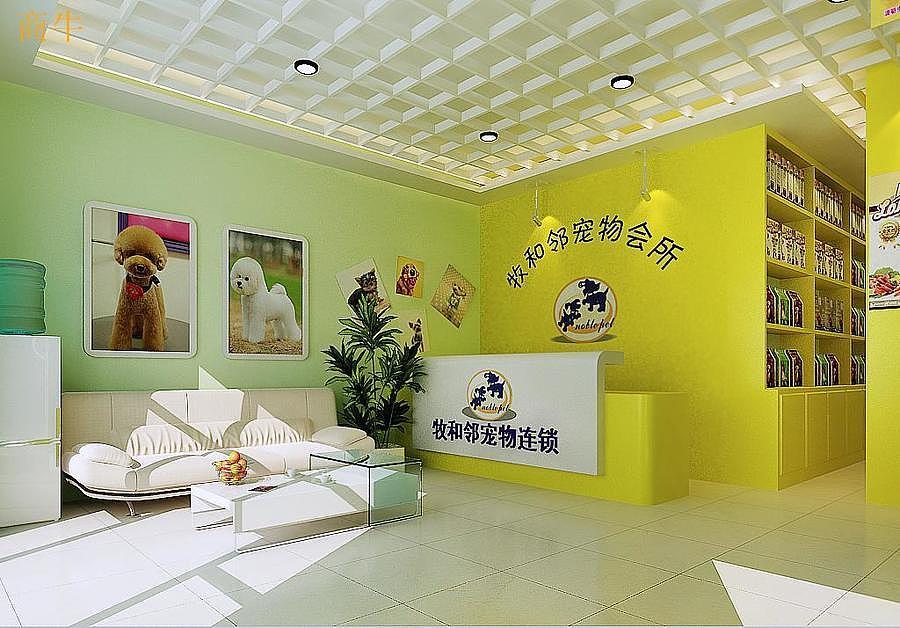 牧和邻宠物所-成都甲醛宠物店装修设计防水pvc墙纸最好图片