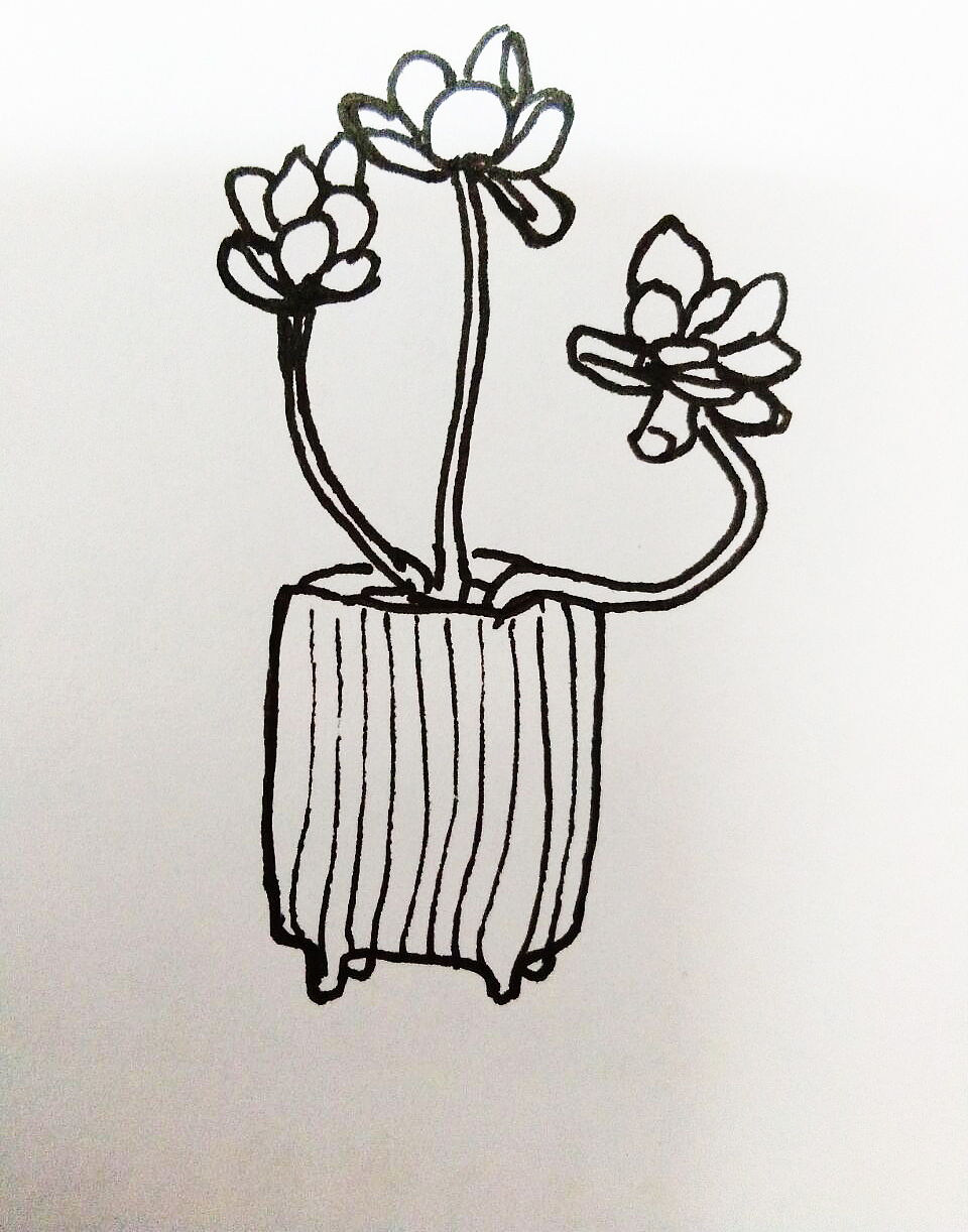手绘多肉植物|其他|其他|女字旁的娜 - 原创作品