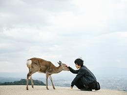 关于京都 奈良 镰仓的记忆