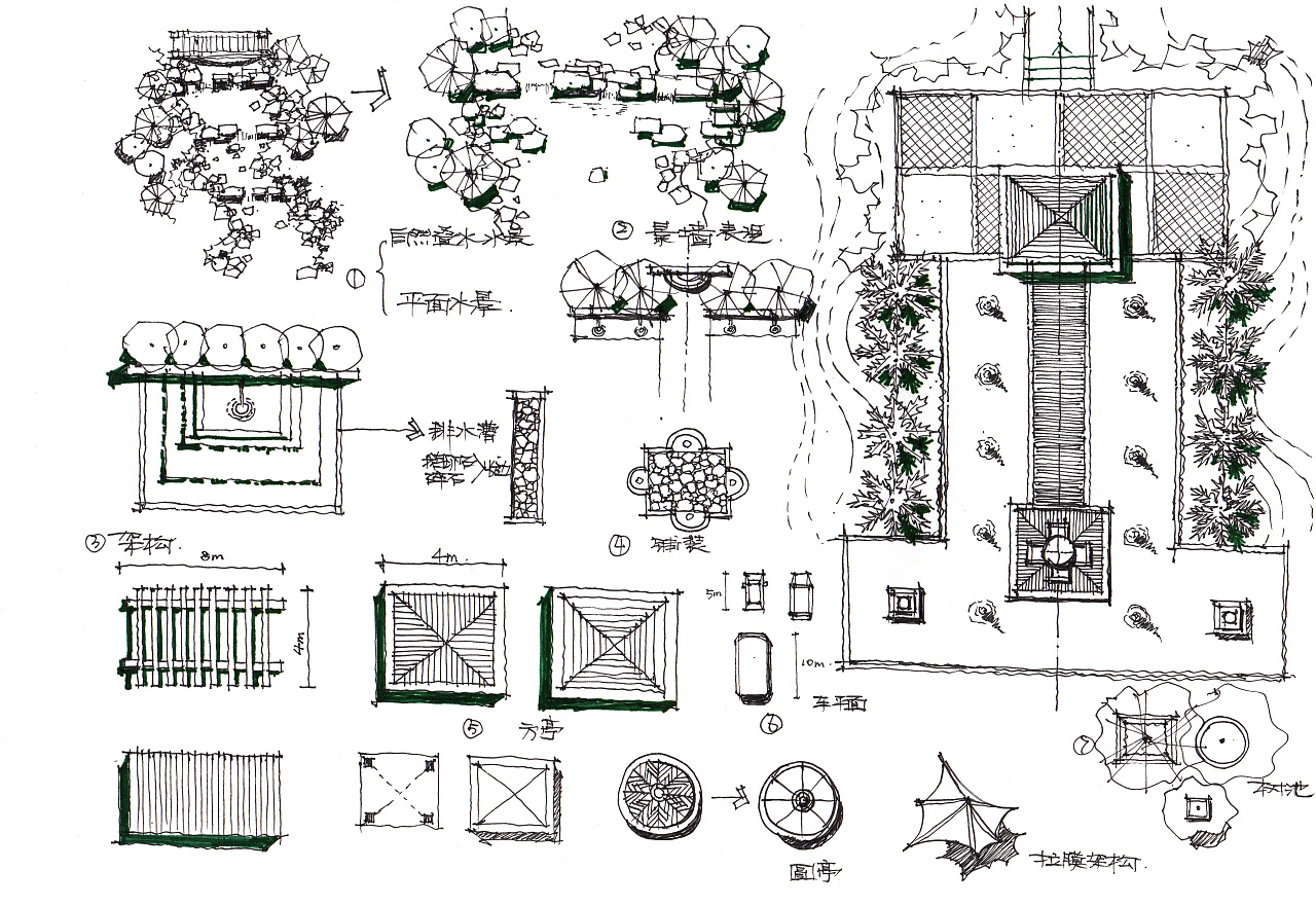 景观平面图上面的植物,地面装饰,水景,亭子,拉膜结构等表现练习,大家