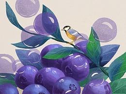 猫与婵插画记 | 水果里的二十四节气(下)