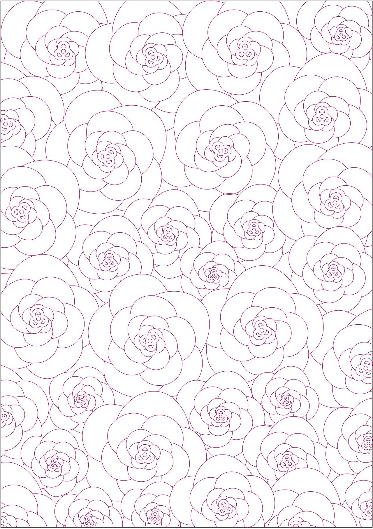 一张a4纸的花