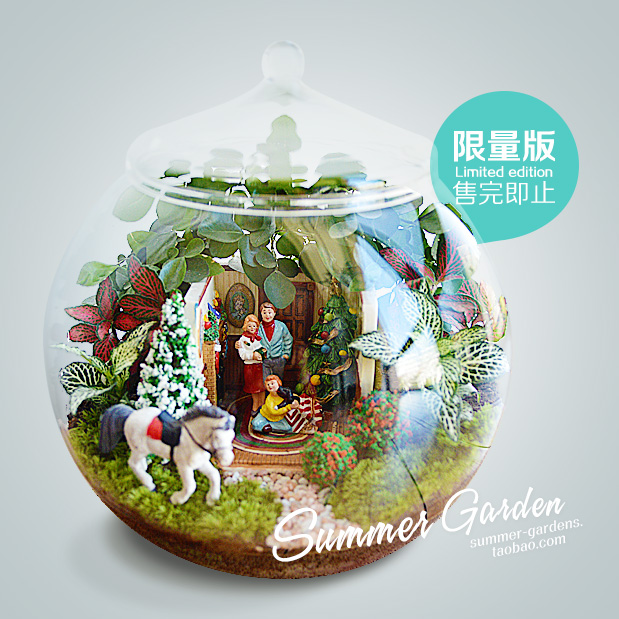 查看《绿植手作--幸福一家主题微景--《夏末花园成长日记33》》原图,原图尺寸:619x619