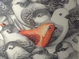 【手绘练习】-铅笔加彩铅-鸟